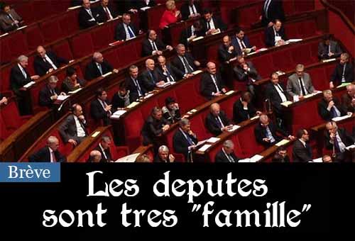 En 2014, l'Assemblée nationale a rémunéré 52 épouses, 28 fils et 32 filles de députés